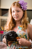 Eight-year old girl holding and feeding a carrot to her guinea pig