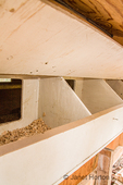 Nesting area of inside of hand-built chicken coop, as seen from the outside