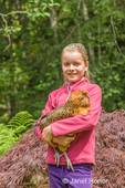 Eleven-year old girl holding an Ameraucana hen