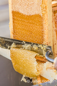 Uncapping honey in a capped frame, using a hot knife