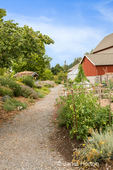 Path to a barn, going by a vegtable garden