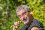 Man eating a freshly harvested Provider Blue Lake green bean, acting silly with a male squash blossom in his ear, in a vegetable garden