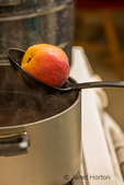 Slotted spoon being used to transfer a peach to ice cold water after being removed from this pot of boiling water and blanched for 30 to 60 seconds.