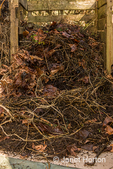 Compost pile illustrating poor techniques, as the pieces are large and decomposing very slowly as a result.