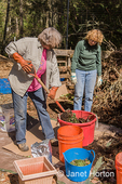 """Woman demonstrating with a compost fork, how to mix compost """"greens"""", """"browns"""", and the proper amount of water in a bucket, before adding the mixture to a compost pile."""