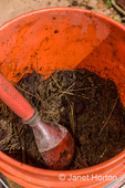 Bucket of rabbit manure about to be used in a compost pile.