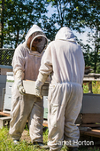 Female beekeepers carrying a honey super of fully capped frames ready to be harvested