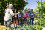 People touring the Pickering Farm Community Garden