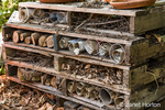 Insect hotel at the Pickering Farm Community Garden