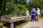 Wheelchair accessible raised garden bed at the Issaquah Flatland Community Garden