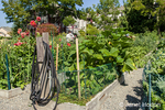 Garden hoses are located every few rows for gardeners to water their beds at the Providence Point Pea Patch Garden