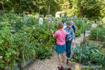 People touring a Pea Patch garden