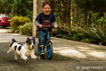 Four year old boy riding bike with his four month old puppy, Jersey, chasing him