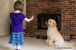 "Five month old Goldendoodle being trained by her four year old owner to ""stay"""