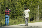 Men photographing a black bear at an unsafe distance