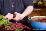Twist or cut off beet tops, leaving an inch of stem and roots to prevent bleeding of color in preparation of canning pickled beets.