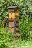 A Warre hive is a vertical top bar hive that is simple to build and easy to use.