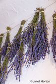 Lavender hung to dry