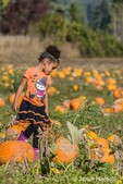 Young girl enjoying a stroll through a pumpkin patch, stopping to ponder a particularly nice pumpkin, at The Gorge White House Fruit Stand