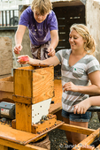 Young woman and boy adding apples to the cider press