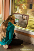 Nine year old girl writing notes in her journal about the meerkat exhibit at the Woodland Park Zoo in Seattle, Washington, USA