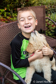 Seven year old boy being licked by a ten week old Goldendoodle puppy in Issaquah, Washington, USA