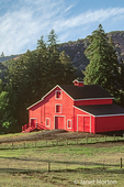 Red barn surrounded by woods, with white barnyard fence, in Santa Cruz Mountains, California, USA