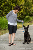 Vito, a four month old German Shepherd puppy obediently sitting on command on his driveway