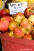 Red bushel basket of Fiesta apples for sale at a Farmer's Market