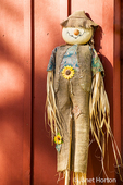 Homemade straw doll or scarecrow decoration in Duvall, Washington, USA