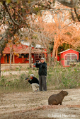 Male and female photograpers photographing other capybaras, when there is one very close to them who seems very relaxed to be near them.