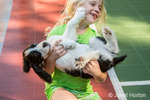 Seven year old girl struggling to hold her wiggly two month old Springer Spaniel puppy, Tre