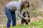 Woman training her ten week old Bernese Mountain puppy, Winston, to sit and stay