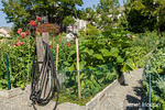 Garden hoses are located every few rows for gardeners to water their beds