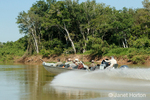 Boat full of tourists racing off to a new report of a jaguar, on the Cuiaba river