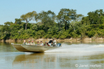 Boat full of tourists racing off to a new report of a jaguar, on the Cuiaba river,