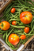 Box of freshly harvested green beans and tomatoes