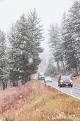 Snowfall on a highway near Blacktail Pond