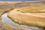Yellowstone River in Hayden Valley in Autumn