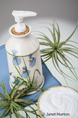 Lotion in an attractive pottery container surrounded by a bowl of lotion and air plants (Tillandsia Bromeliads)