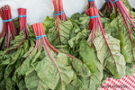 Bundles of Swiss Chard for sale at a Farmers Market