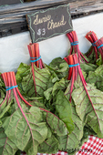 Bundles of Swiss Chard for sale at a Farmers Market in Issaquah, Washington, USA