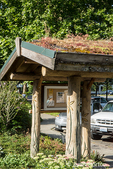 Living or green roof at the Cedar River Watershed Education Center