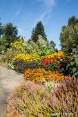 Flower garden scenic