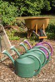 Row of plastic watering cans for hand-watering a garden