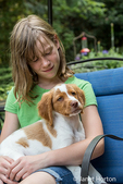 "Ten year old girl sitting on a patio chair, holding her two month old Brittany Spaniel ""Archie"" in Issaquah, Washington, USA"