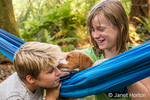 "Two month old Brittany Spaniel ""Archie"" resting in a hammock, licking an eleven year old boy, as a ten year old girl watches in Issaquah, Washington, USA"