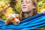 "Ten year old girl watching her two month old Brittany Spaniel ""Archie"" who is resting in a hammock, in Issaquah, Washington, USA"