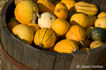 Miscellaneous gourds in wooden half barrel