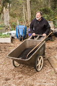 Man pushing a wheelbarrow of compost for springtime soil preparation in a community garden in Isssaquah, Washington, USA